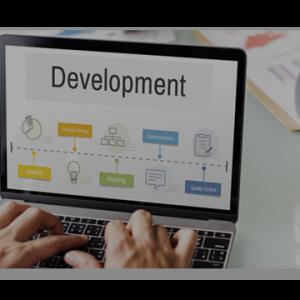 Website Design & development Service by MajorBrains