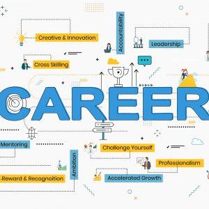 Career at MajorBrains